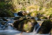 Tatra Water
